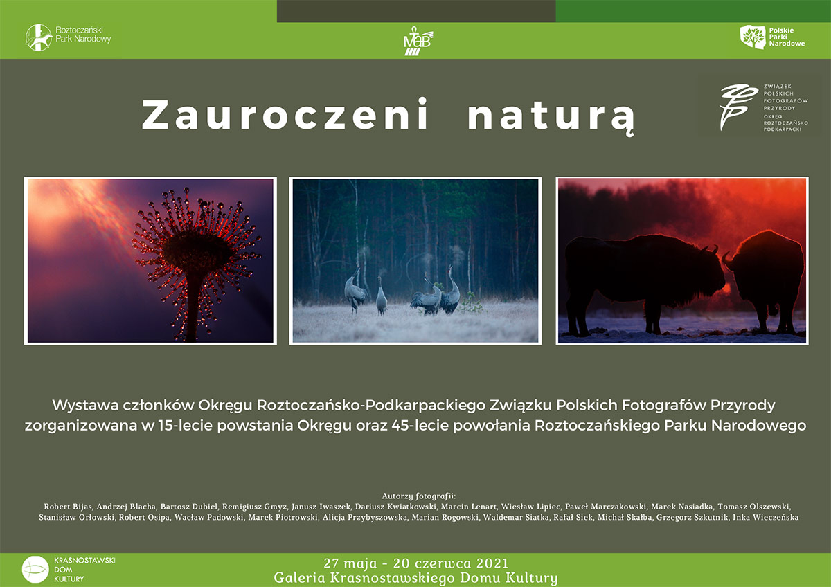Zauroczeni Naturą wKrasnostawskim Domu Kultury
