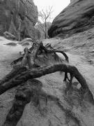 Krajobraz – wyróżnienie Anna Węglarz – Poza zasięgiem ludzkich mocy