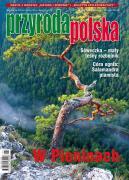 Fotografia autorstwa Grzegorza Szkutnika na okładce Przyrody Polskiej